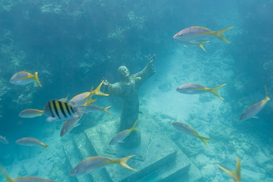 Christ Of The Deep Statue In A Coral Photograph