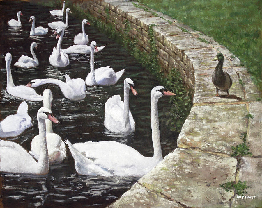 christchurch harbour swans with Mallard Duck conversation Painting  - christchurch harbour swans with Mallard Duck conversation Fine Art Print