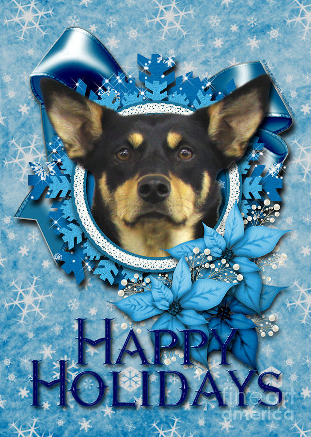 Christmas - Blue Snowflakes Australian Kelpie Digital Art
