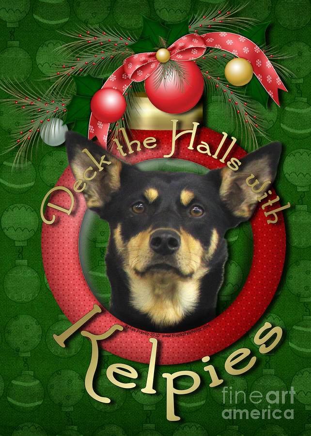 Australian Kelpie Digital Art - Christmas - Deck The Halls With Kelpies by Renae Laughner
