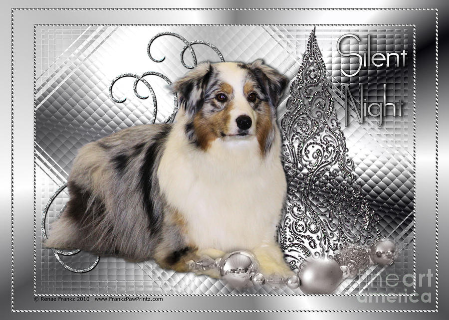 Christmas - Silent Night - Australian Shepherd Digital Art  - Christmas - Silent Night - Australian Shepherd Fine Art Print