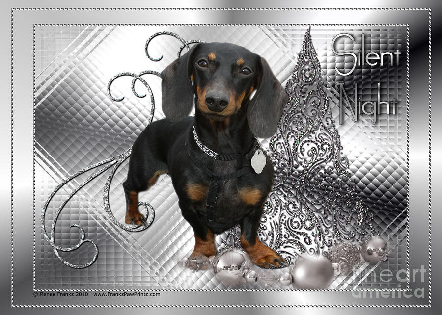 Christmas - Silent Night - Dachshund Digital Art