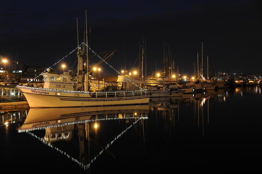 Christmas At Fishermans Terminal Photograph  - Christmas At Fishermans Terminal Fine Art Print