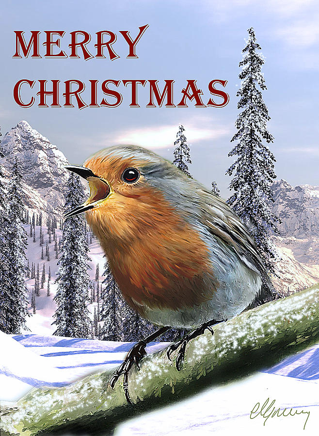 Christmas Card Red Robin Painting  - Christmas Card Red Robin Fine Art Print