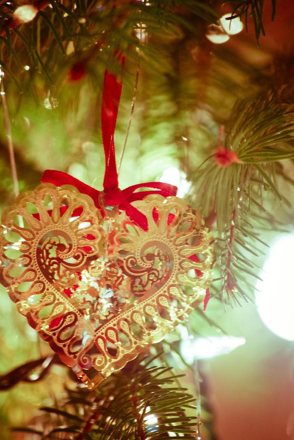 Christmas Heart Photograph