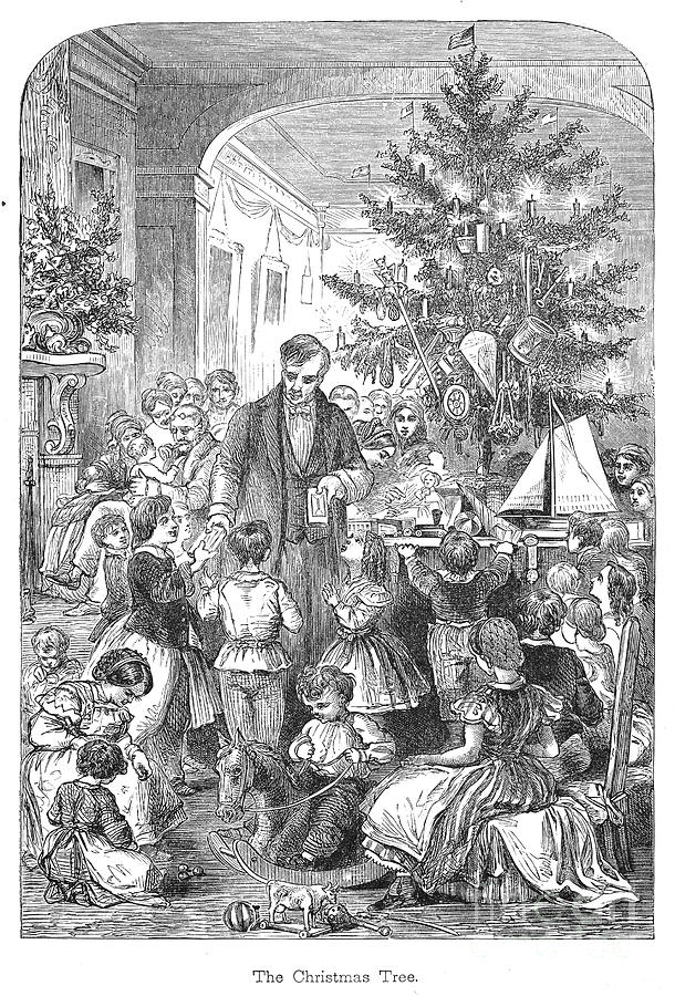 Christmas Tree, 1870 Photograph