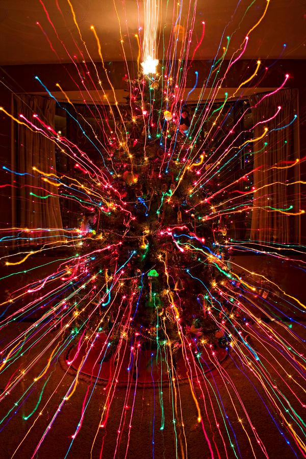 Christmas Tree Colorful Abstract Photograph