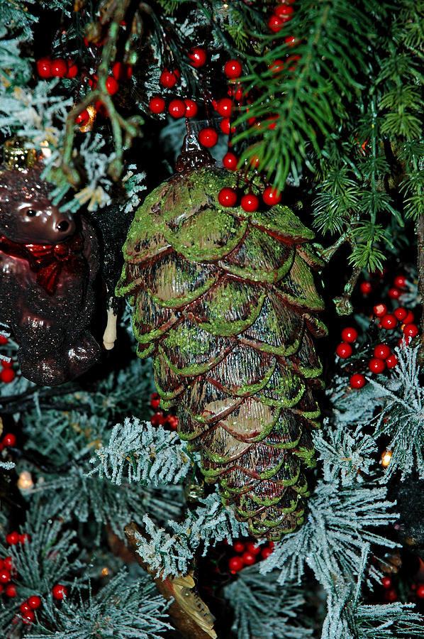 Christmas tree pine cone photograph by leeann mclanegoetz for Large christmas pine cones