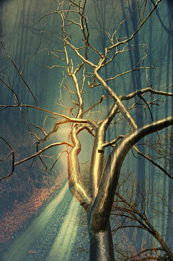 Tree Photograph - Chrome Forest by Marty Koch