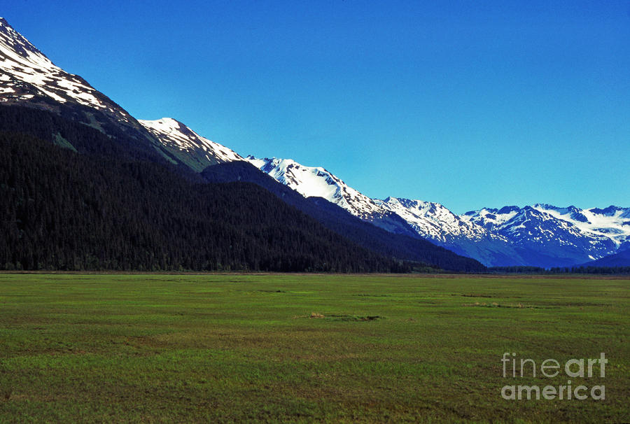 Chugach Mountains Green Plain Photograph