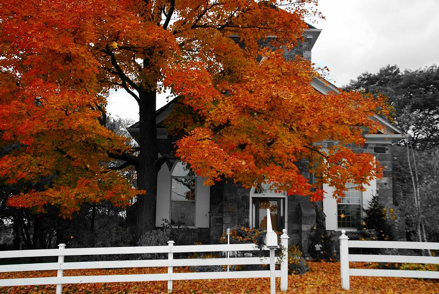 Fall Photograph - Church In Autumn by Andrea Kollo