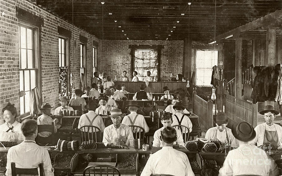 Cigar Factory, 1909 Photograph