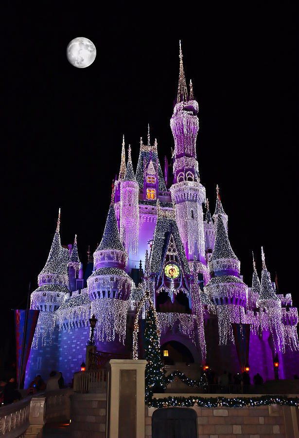 Cinderellas Castle At Night Photograph  - Cinderellas Castle At Night Fine Art Print