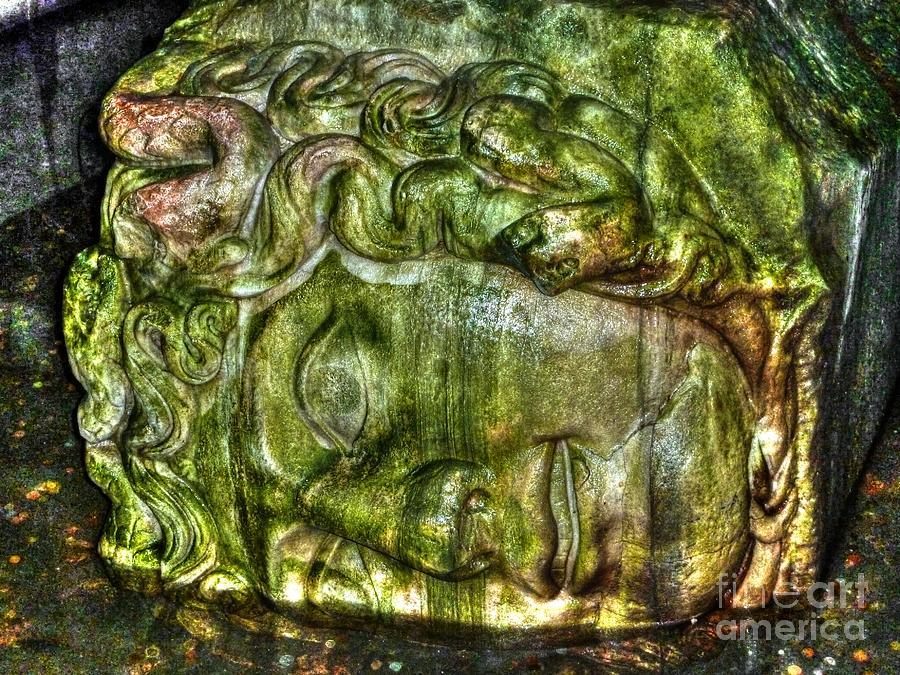 Cistern Medusa Photograph