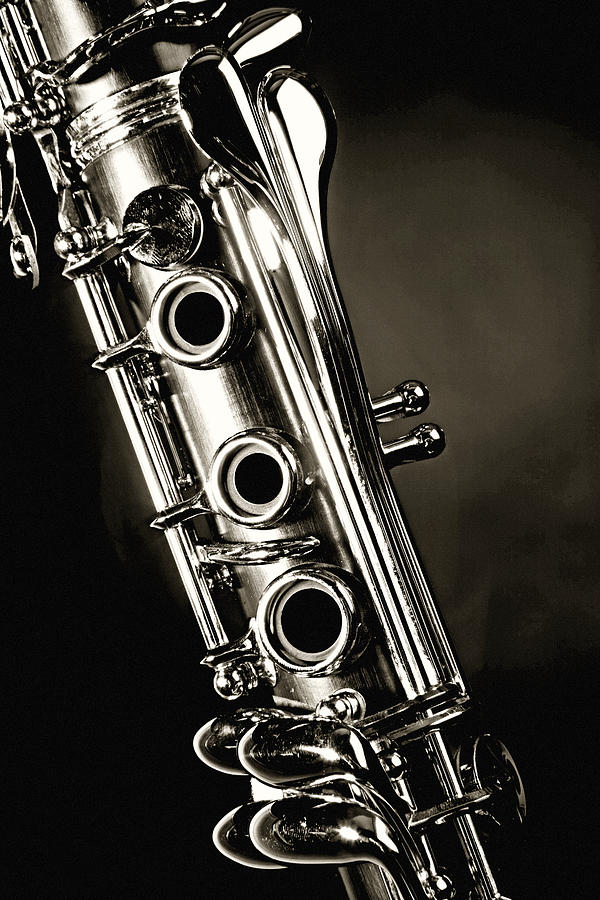 Clarinet Isolated In Black And White Photograph