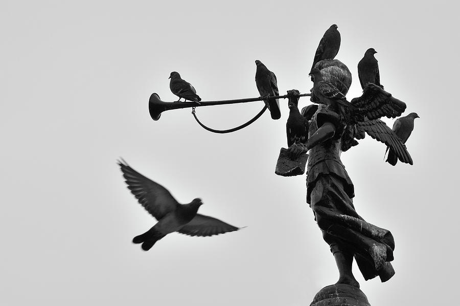 Clarinet Statue Photograph