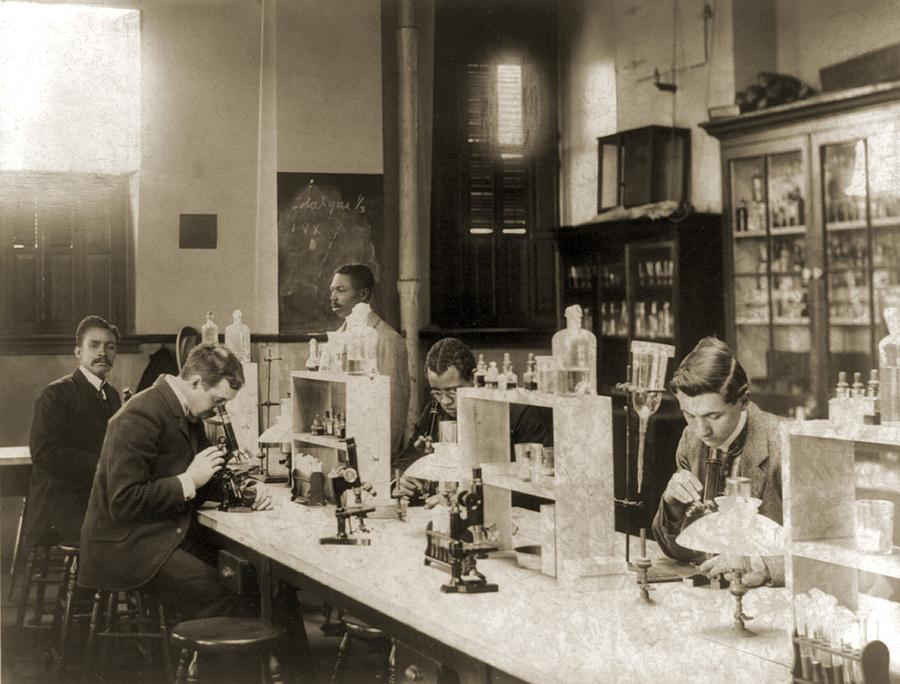 Class In Bacteriology At Howard Photograph  - Class In Bacteriology At Howard Fine Art Print