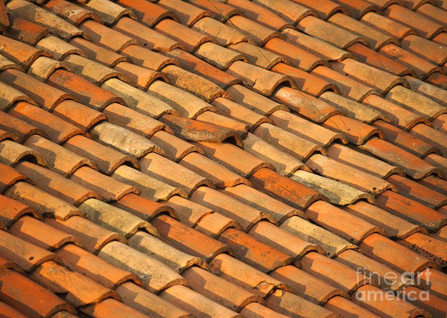 Clay Roof Tiles Photograph  - Clay Roof Tiles Fine Art Print