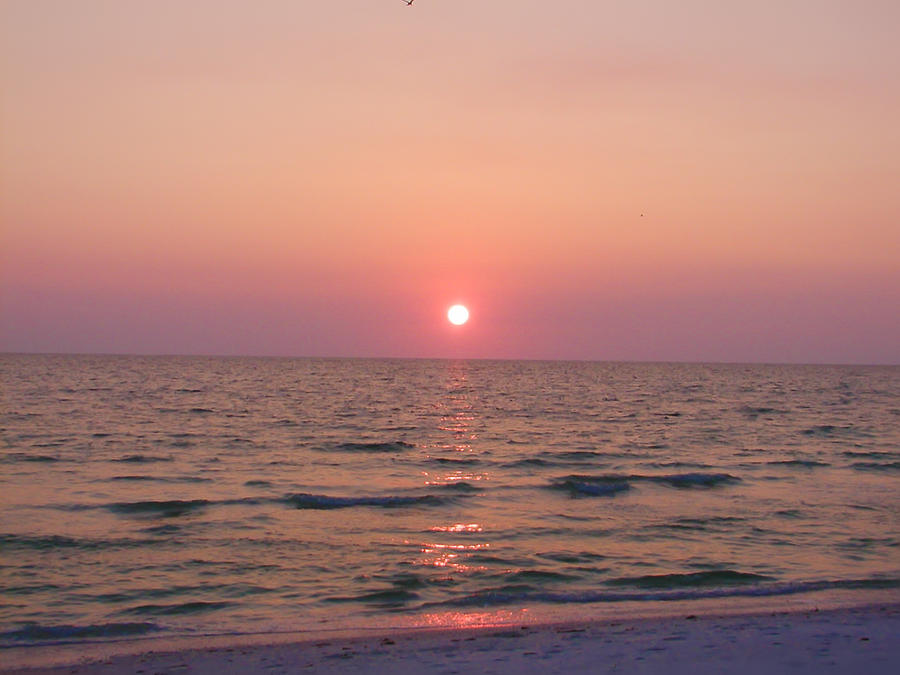 Clearwater Sunset Photograph  - Clearwater Sunset Fine Art Print