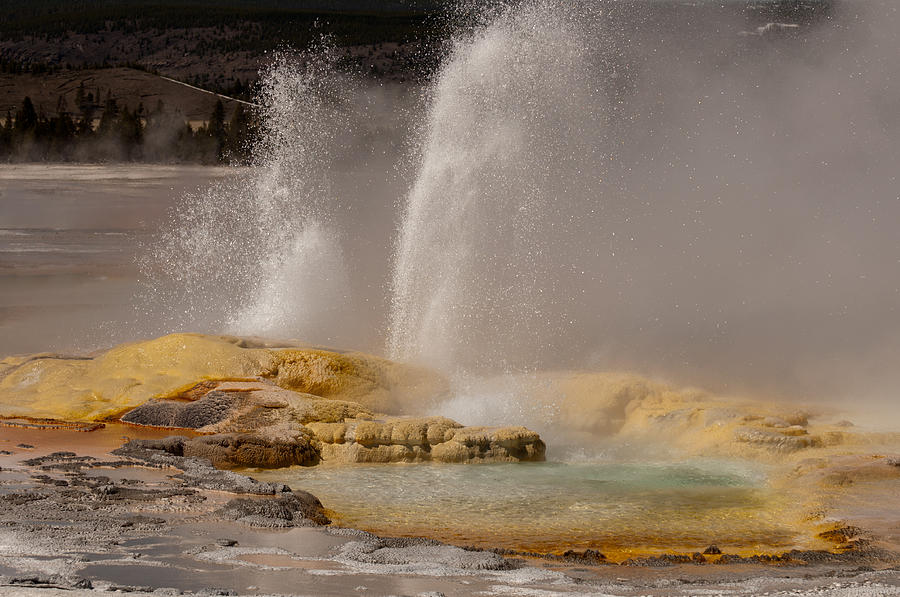 Clepsydra Geyser Yellowstone National Park Photograph
