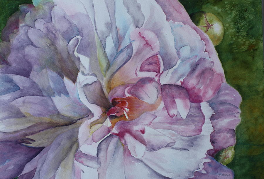 Close Up Floral Painting - Close Focus Peony by Patsy Sharpe