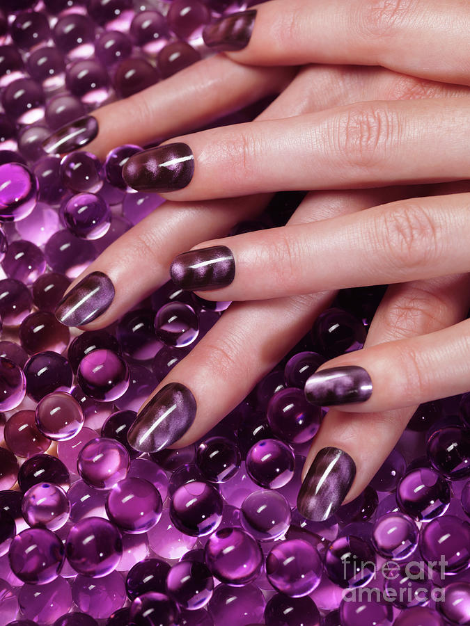 Closeup Of Woman Hands With Purple Nail Polish Photograph