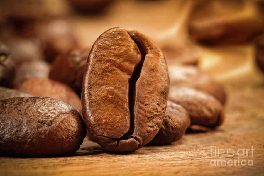 Closeup Shot Of A Coffee Bean On Wood Photograph