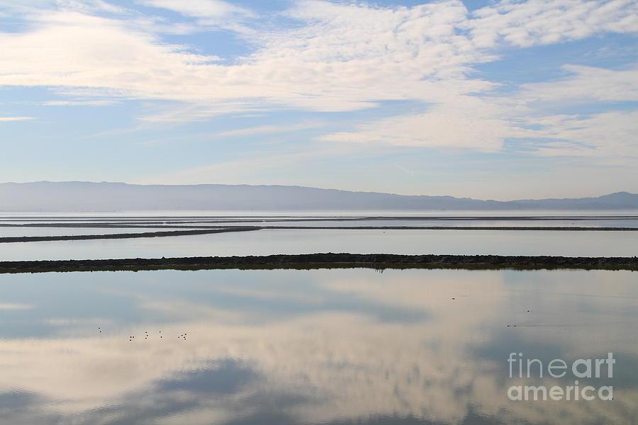 Cloud Reflections On Salt Marsh At Coyote Hills Regional Preserve California . 7d10968 Photograph