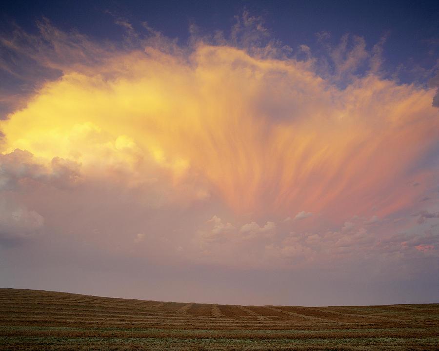 Clouds Over Canola Harvest, Saint Photograph
