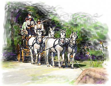 Coaching In Acadia- Carriage Driving Four In Hand Painting