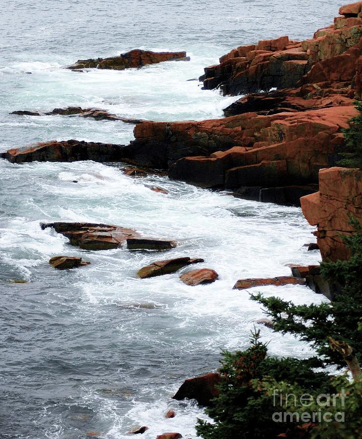 Coast Of Maine Photograph