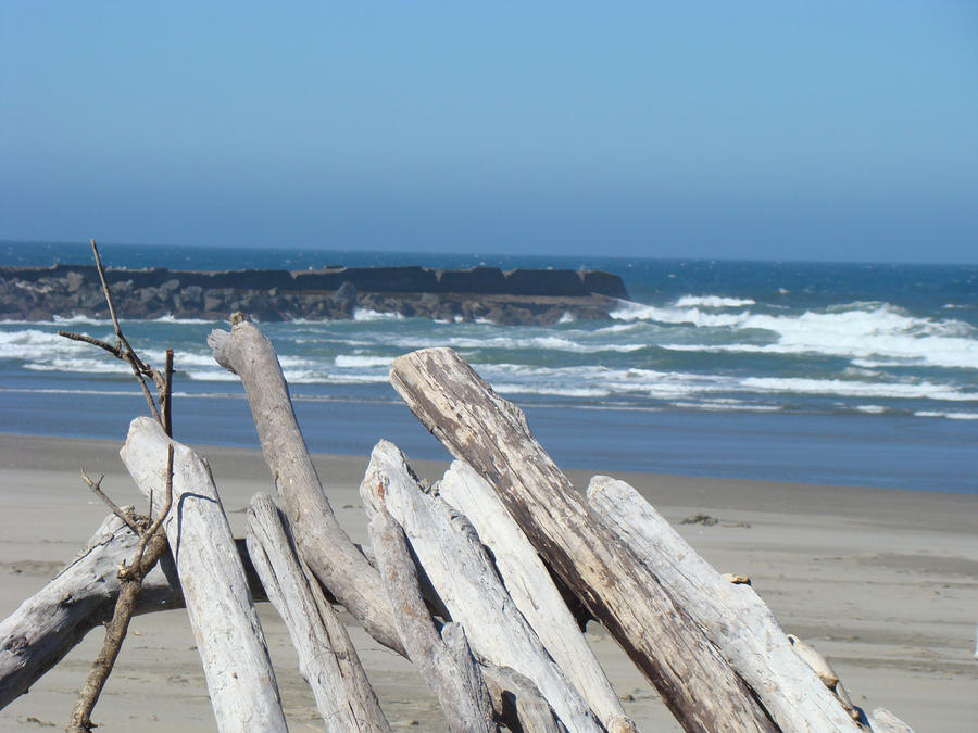 Coastal Driftwood Art Prints Blue Sky Ocean Waves Photograph