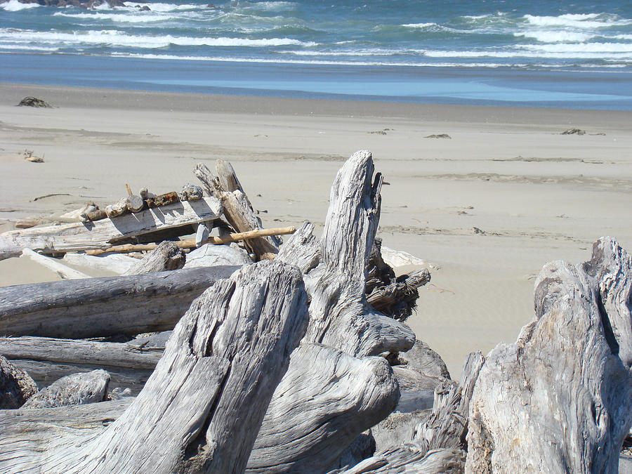 Coastal Driftwood Art Prints Blue Waves Ocean Photograph