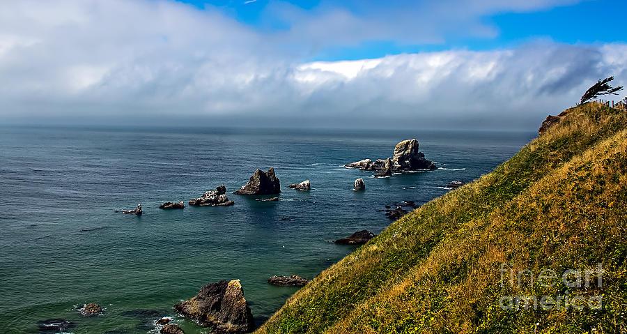 Oregon Photograph - Coastal Look by Robert Bales