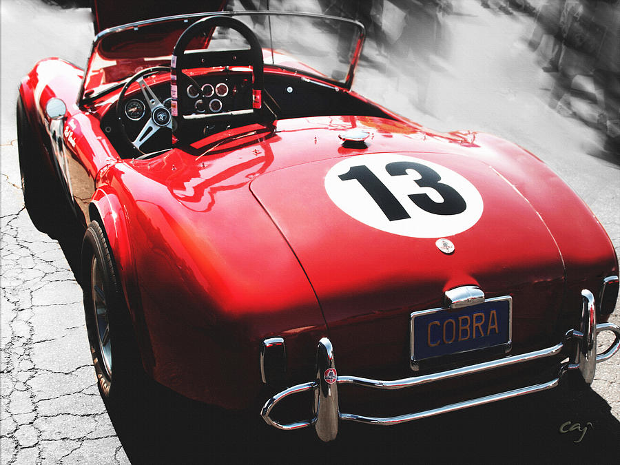 Cobra In Red Photograph