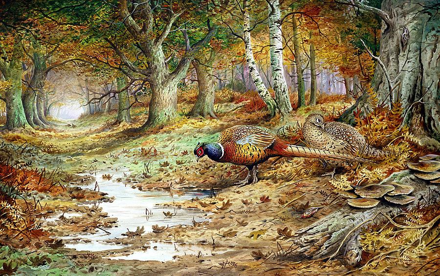 Cock Pheasant And Sulphur Tuft Fungi Painting