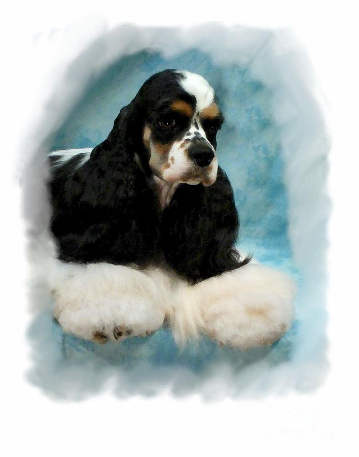 Cocker Spaniel 814 Digital Art  - Cocker Spaniel 814 Fine Art Print