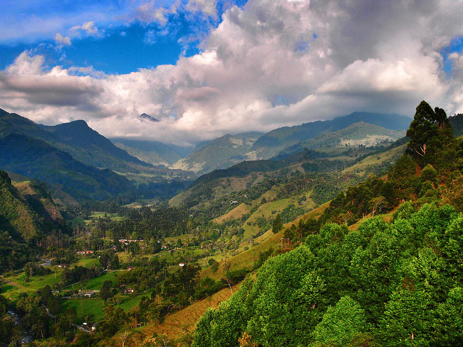 Cocora Valley Photograph - Cocora Valley by Skip Hunt