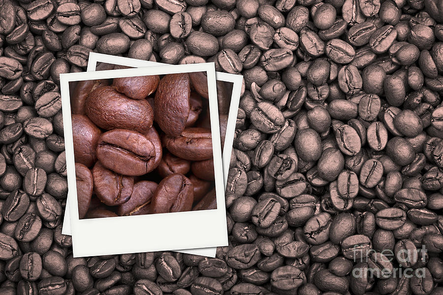 Addiction Photograph - Coffee Beans Polaroid by Jane Rix