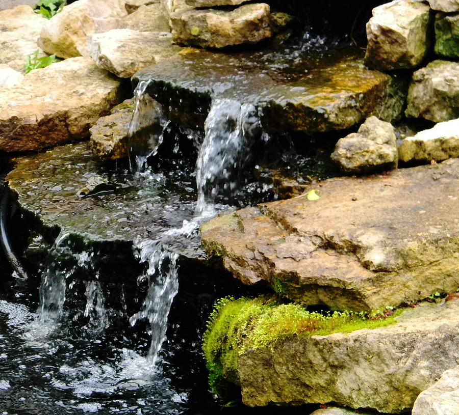 Coi pond waterfall by billie sue crownover coi pond for Waterfalls for ponds for sale
