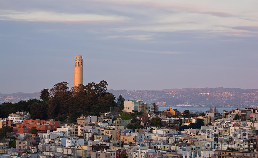 Food, Drinks and Sights of San Francisco California |Coit Tower Flowers