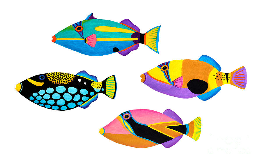 Collection Of Trigger Fishes Painting  - Collection Of Trigger Fishes Fine Art Print