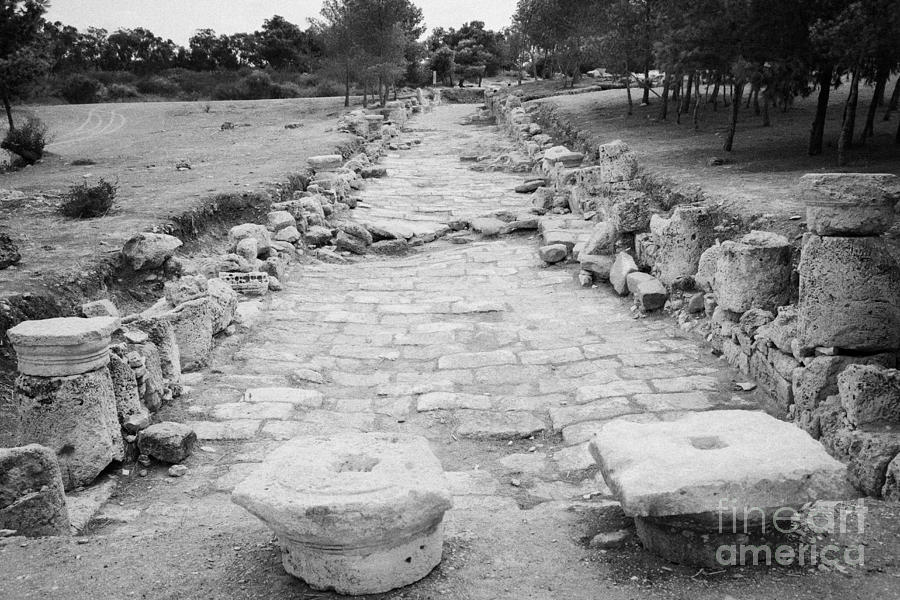 Colonnaded Street In The Ancient Site Of Salamis Famagusta Turkish Republic Of Northern Cyprus Trnc Photograph  - Colonnaded Street In The Ancient Site Of Salamis Famagusta Turkish Republic Of Northern Cyprus Trnc Fine Art Print