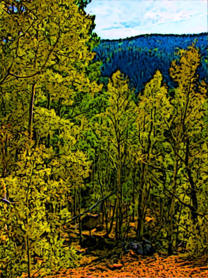 Colorado Aspens Drawing