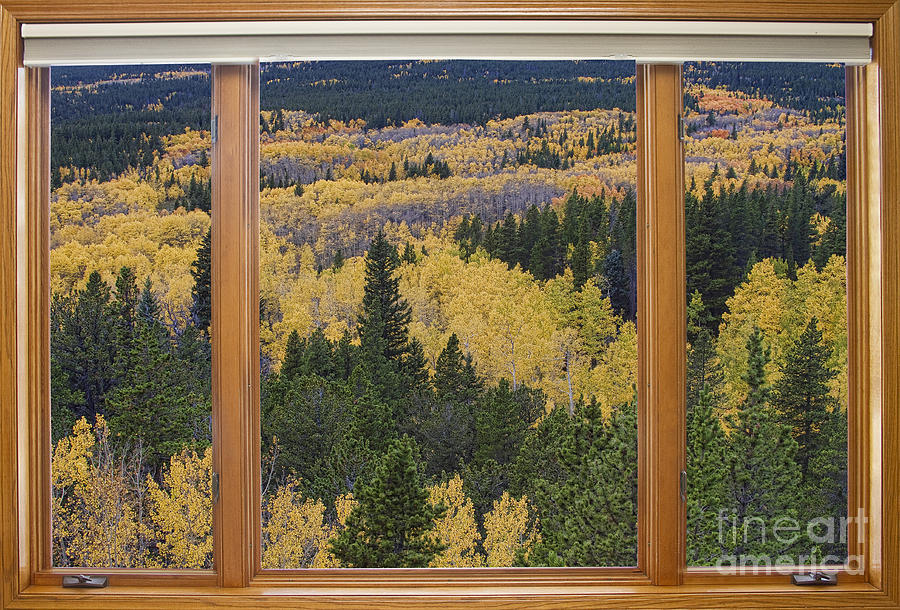 Colorado Autumn Picture Window Frame Art Photos Photograph  - Colorado Autumn Picture Window Frame Art Photos Fine Art Print