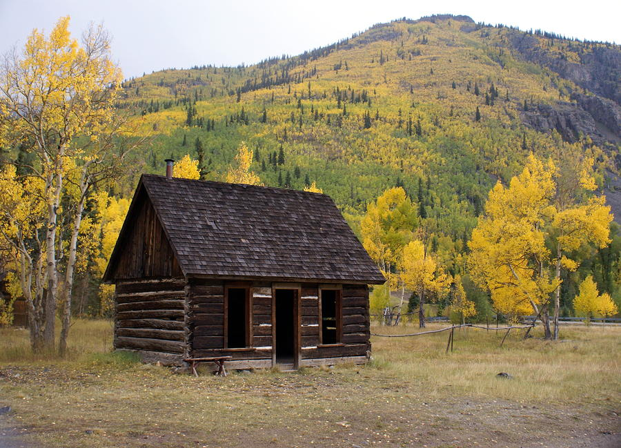 Colorado Cabin Photograph  - Colorado Cabin Fine Art Print