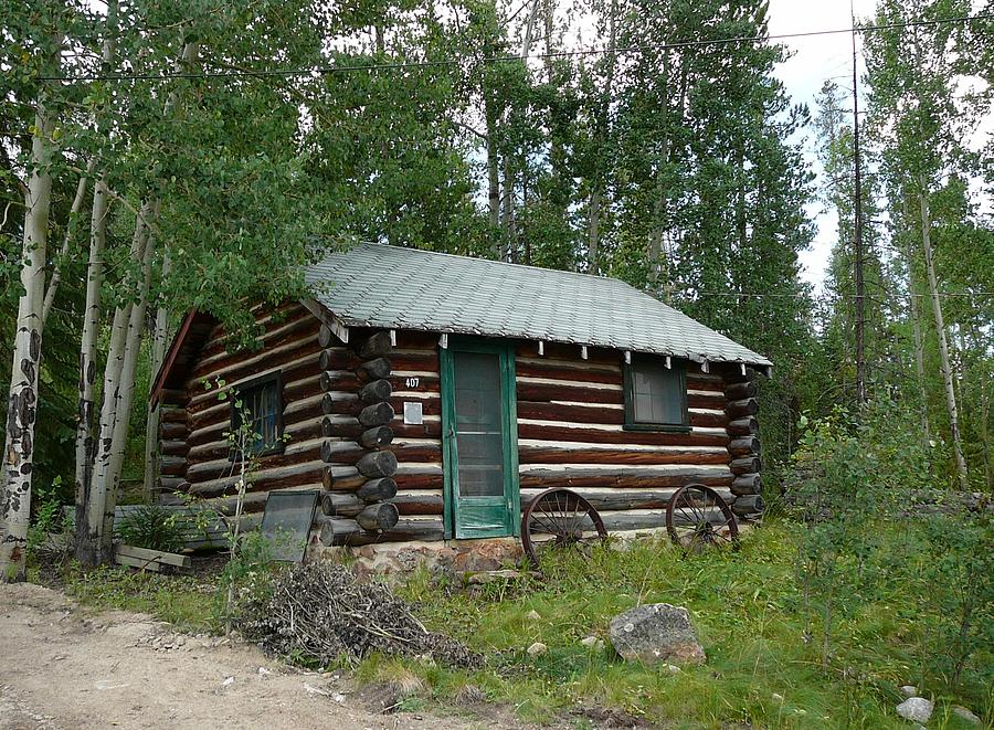 Colorado rustic cabin photograph by debbie poetsch Rustic cottages for sale