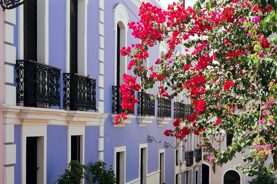 Colorful Balconies Of Old San Juan Puerto Rico Photograph  - Colorful Balconies Of Old San Juan Puerto Rico Fine Art Print