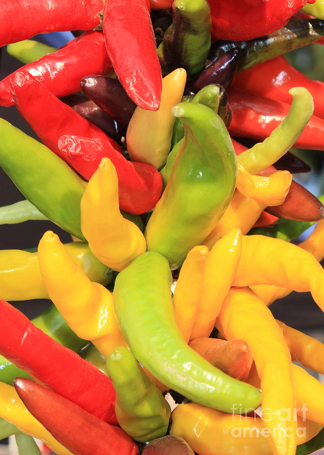 Colorful Chili Peppers Photograph