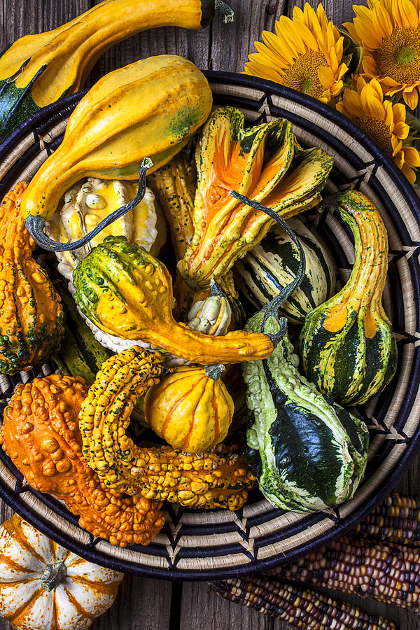 Colorful Gourds In Basket Photograph